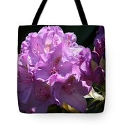 Rhododendron In The Morning Light Tote Bag