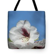 Rhododendron In White And Burgundy Tote Bag