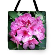Rhododendron Square With Border Tote Bag
