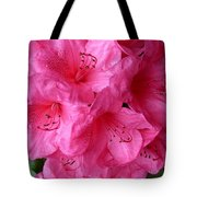 Rhody Girl Tote Bag