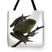 Ribbeting Frog In A Bucket Tote Bag