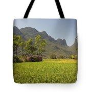 Rice Farm Tote Bag