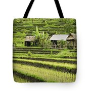 Rice Fields In Bali Indonesia Tote Bag