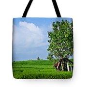 Rice Fields Tote Bag by Nila Newsom
