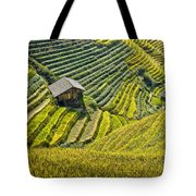 Rice Fields Terraces Tote Bag