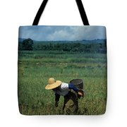 Rice Harvest In Southern China Tote Bag
