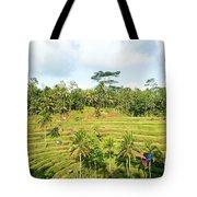 Rice Paddy Field Plantation Tote Bag