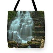 Ricketts Glen Cascading Falls Tote Bag