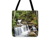 Ricketts Glen Delaware Falls Tote Bag