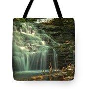 Ricketts Glen Shawnee Waterfall Tote Bag