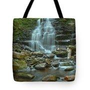 Ricketts Glen Waterfall Canyon Tote Bag