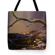 Ridgenosed Rattlesnake 3 Tote Bag