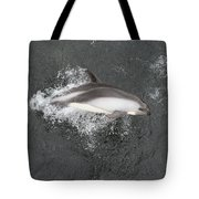 Riding The Bow Tote Bag