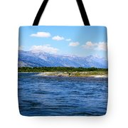 Riding The Snake Tote Bag