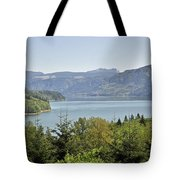 Riffe Lake Tote Bag