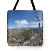 Rincon Valley Tote Bag
