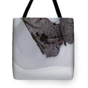 Ring Around The Tree Tote Bag