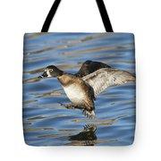 Ring-necked Duck Landing Tote Bag