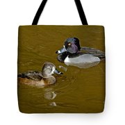 Ring-necked Duck Pair Tote Bag