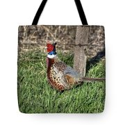 Ringneck By A Fence Post Tote Bag