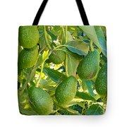 Ripe Avocado Fruits Growing On Tree As Crop Tote Bag