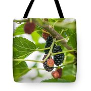 Ripe Mulberry On The Branches Tote Bag