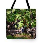 Ripening Grapes Tote Bag