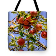 Ripening In The Sun Tote Bag