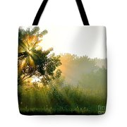 Rise And Shine Tote Bag by Sue Stefanowicz