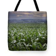 Rise To Meet The Day Tote Bag