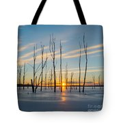 Rising Throught The Sticks Tote Bag