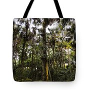 River Bend Park 2 Tote Bag
