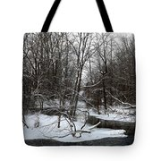 River Bends Tote Bag