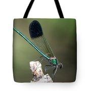 River Damselfly  Tote Bag