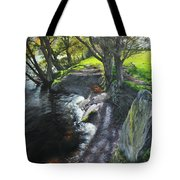 River Dee At Rhug Tote Bag