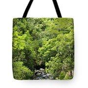 River Glimpses Tote Bag