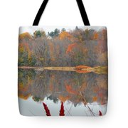 River Mirror Autumn Tote Bag
