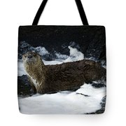 River Otter   #0978 Tote Bag