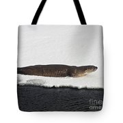 River Otter   #1067 Tote Bag