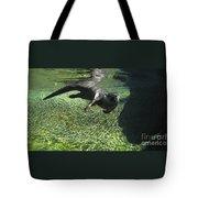 River Otter-7714 Tote Bag