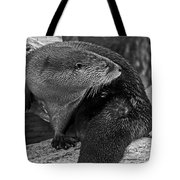 River Otter In Black And White Tote Bag