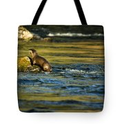 River Otter On A Rock Tote Bag