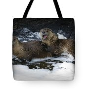 River Otters   #1030 Tote Bag