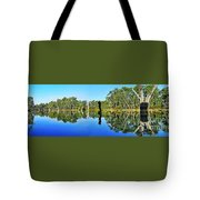 River Panorama And Reflections Tote Bag