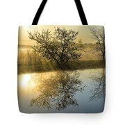 River Rays Tote Bag