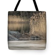 River Rock And Reeds Tote Bag