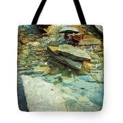 River Rock Path Tote Bag