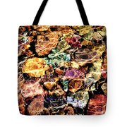 River Rock Rainbow Tote Bag