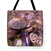 River Shells Tote Bag