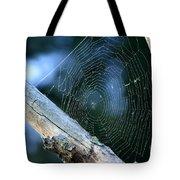 River Spider Web   Tote Bag
